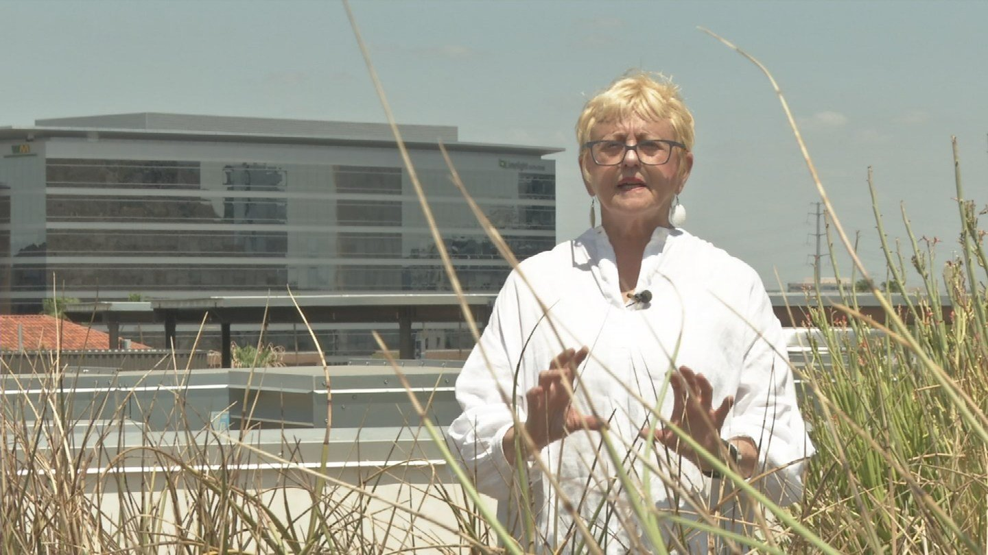 The roof of Tempe's transit center looks like a garden.Architect Bonnie Richardson says the plantskeepthe building cool, adding that architects are experimenting with which ones work best.(Source: 3TV/CBS 5)